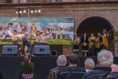 2014-San Froilan