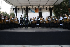2015-Fiesta San Iago